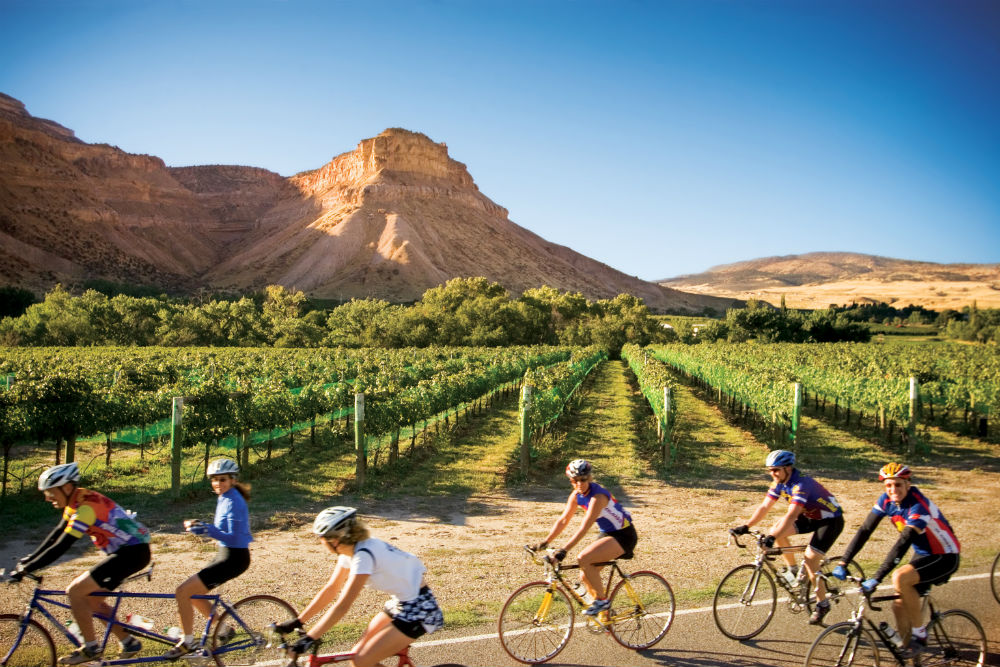 Cycling through the vineyards in Palisade, Colorado Wine Country. Image Credit: Denise Chambers/Miles